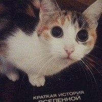 Аватар пользователя Aleksej 9