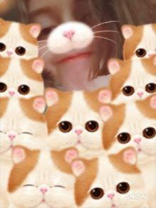 Аватар пользователя lalalala