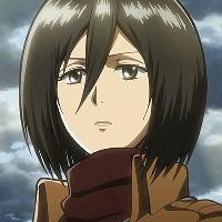 Фото Mikasa 1