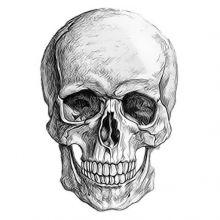 Аватар пользователя Genastarraw