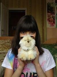 Аватар пользователя Dianka